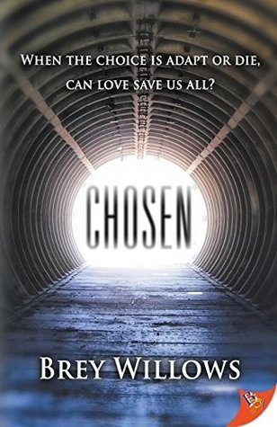 Book Review: 'Chosen' by Brey Willows